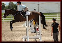 Holly coaching one of her eventing/jumping clients, Megan and Buddy