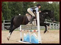 Eventing Student - Joanne