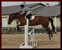 Eventing Student - Robynne